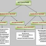 схема кетоноурии